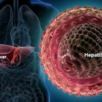 hepatitis-b-virus